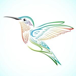 big colorful hummingbird