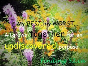 flowers and weeds qoute 2