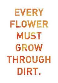 grow thru dirt