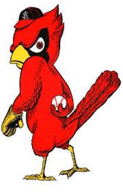 angry bird baseball