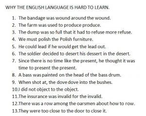 homograph sentences